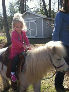 ac pony