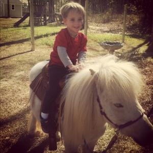 c pony